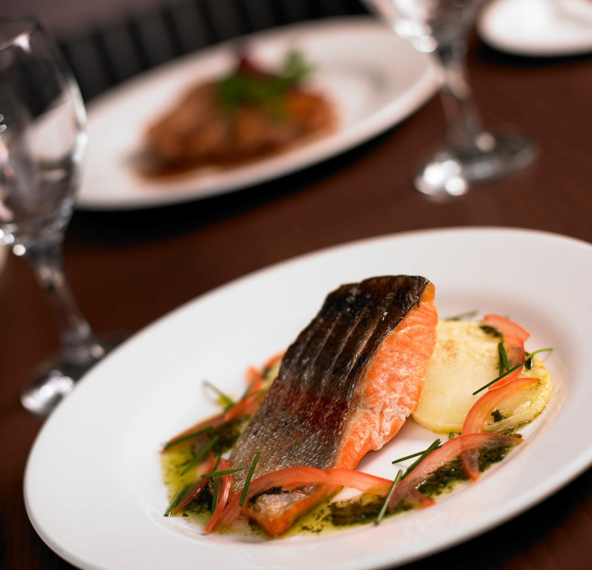Salmon Food Photography