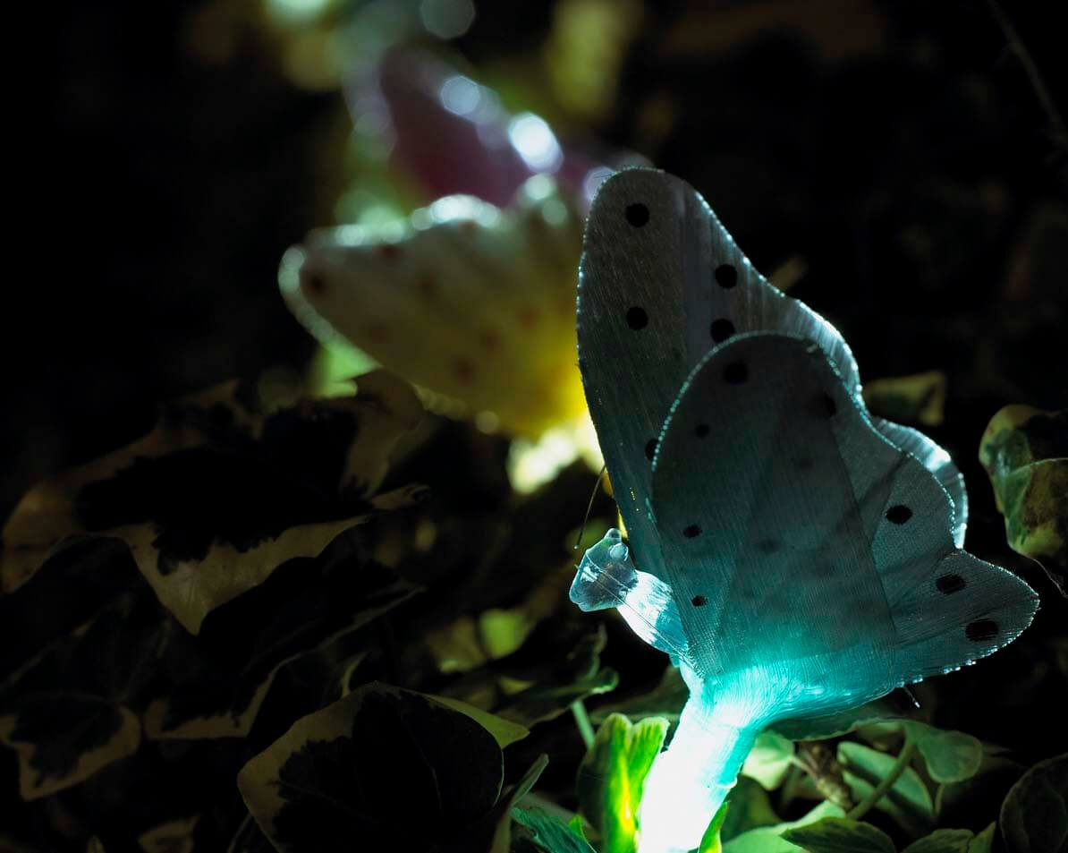 Butterfly Outdoor Lights Product Photography